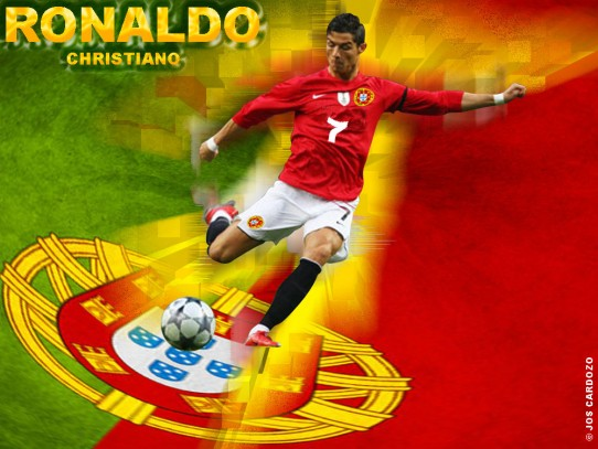 Portugal Soccer Team Logo Wallpaper wwwpixsharkcom 542x407