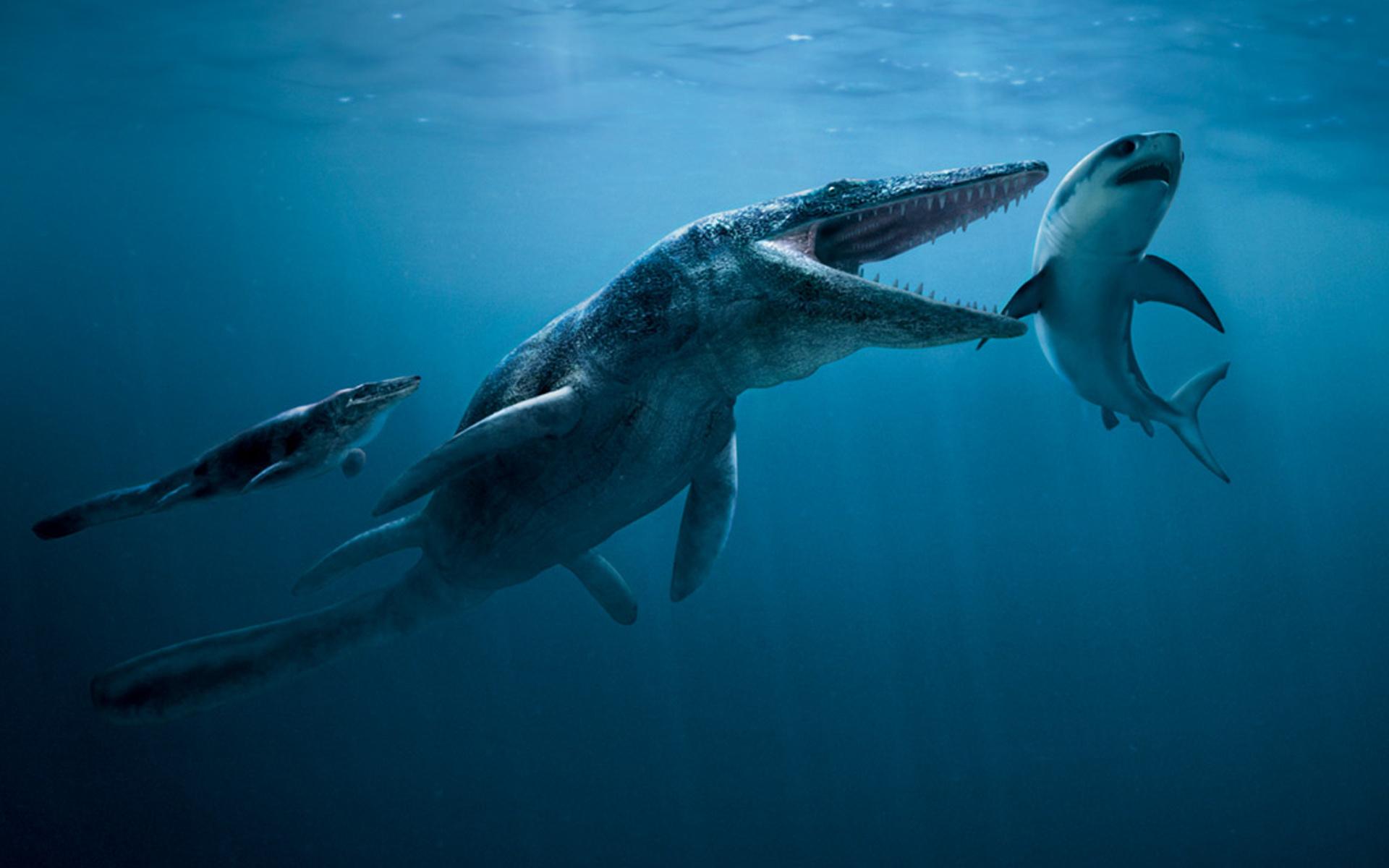 dinosaur designs reptiles awesome dinosaurs prehistoric ocean full 1920x1200