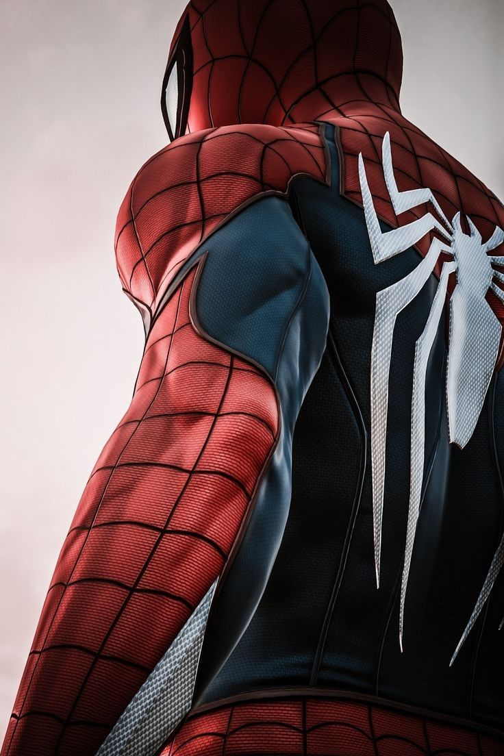 Best 200 Wallpapers For Android and iOS Marvel spiderman 736x1104