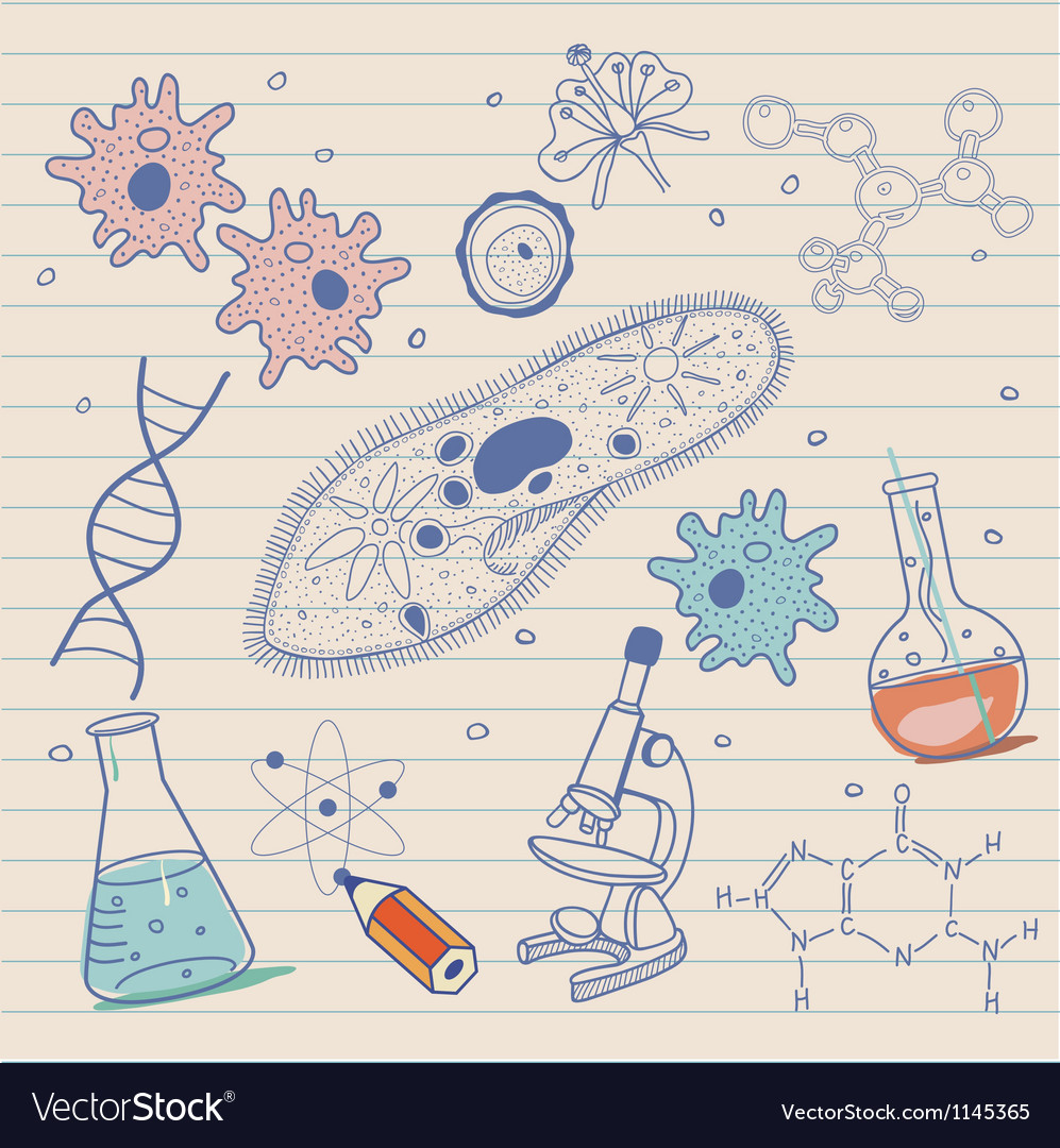 Biology sketches background in vintage style Vector Image 997x1080