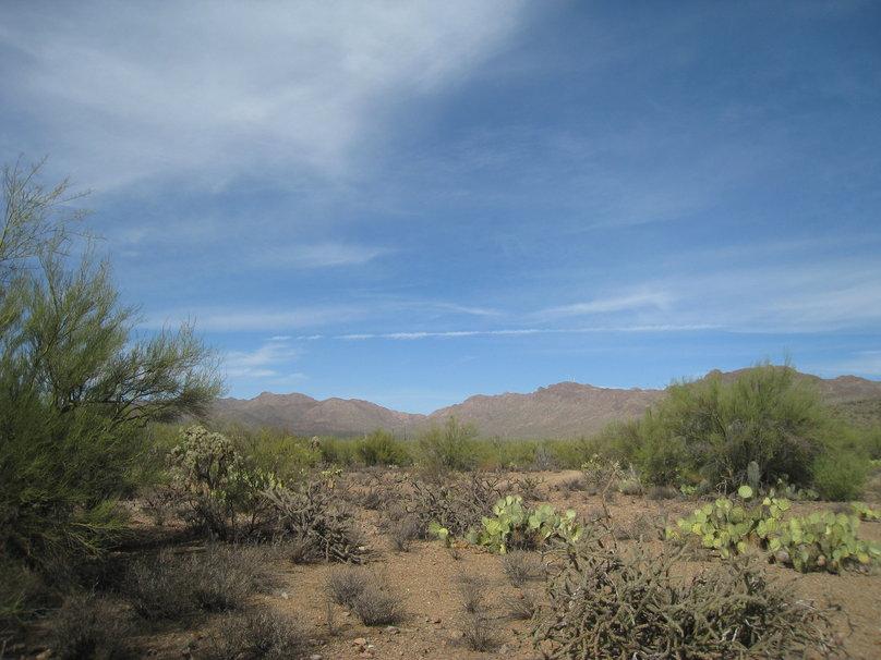 Arizona Desert wallpaper   ForWallpapercom 808x606