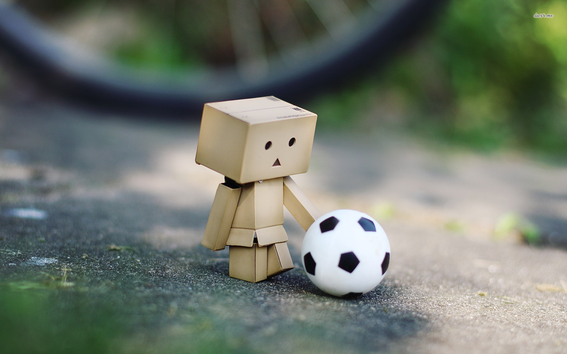 48 Cool Green Soccer Ball Wallpapers On Wallpapersafari: [45+] Cute Soccer Wallpapers On WallpaperSafari