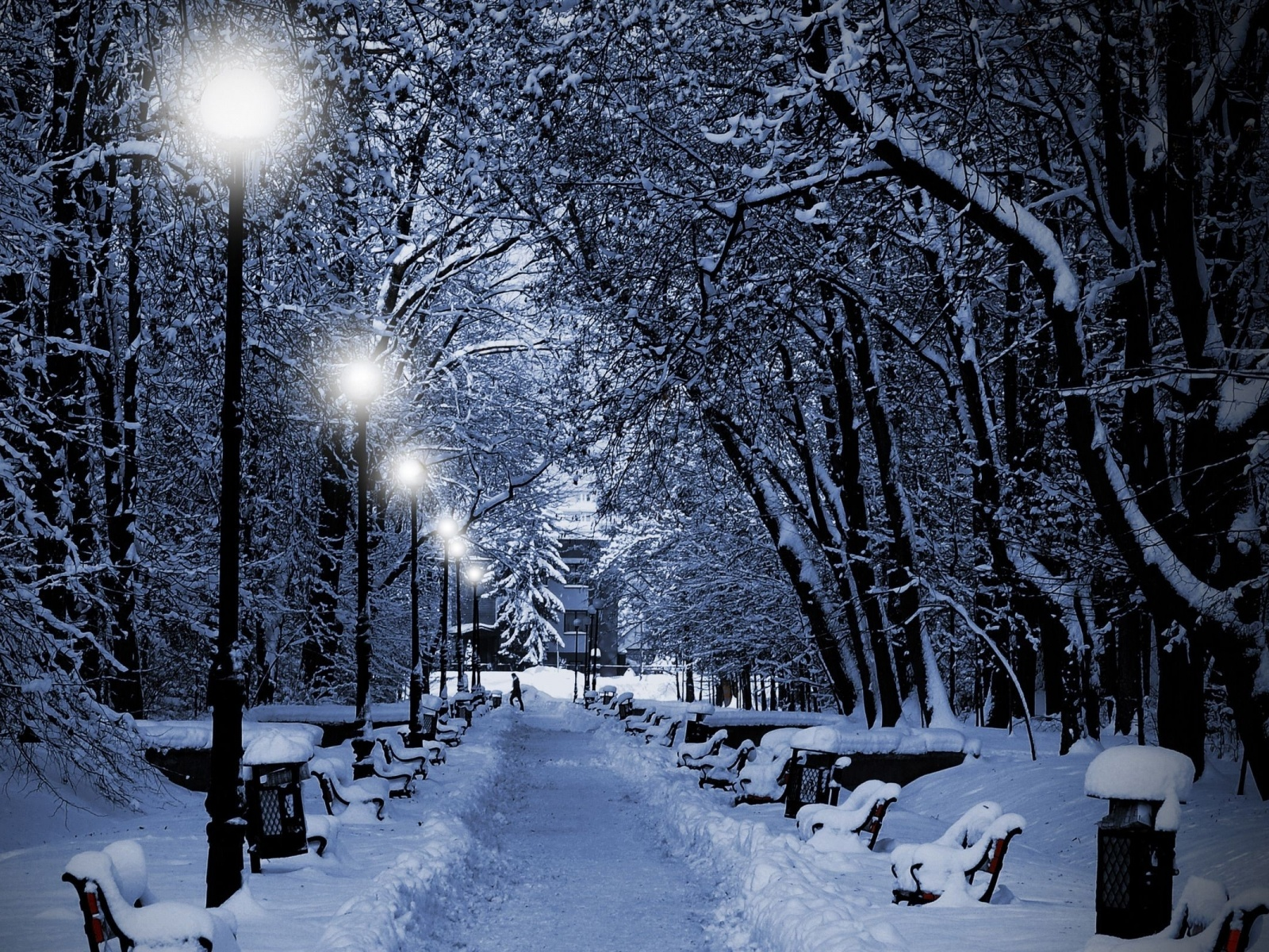 1600x1200 Winter Trees Lamps Way desktop PC and Mac wallpaper 1600x1200