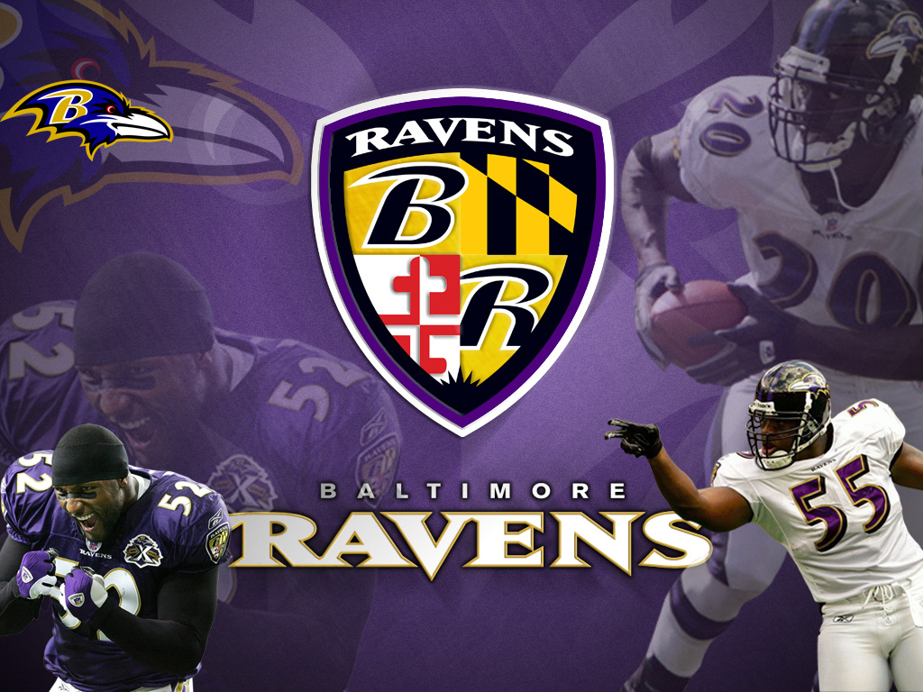 Baltimore Ravens Wallpaper HDComputer Wallpaper Wallpaper 1024x768