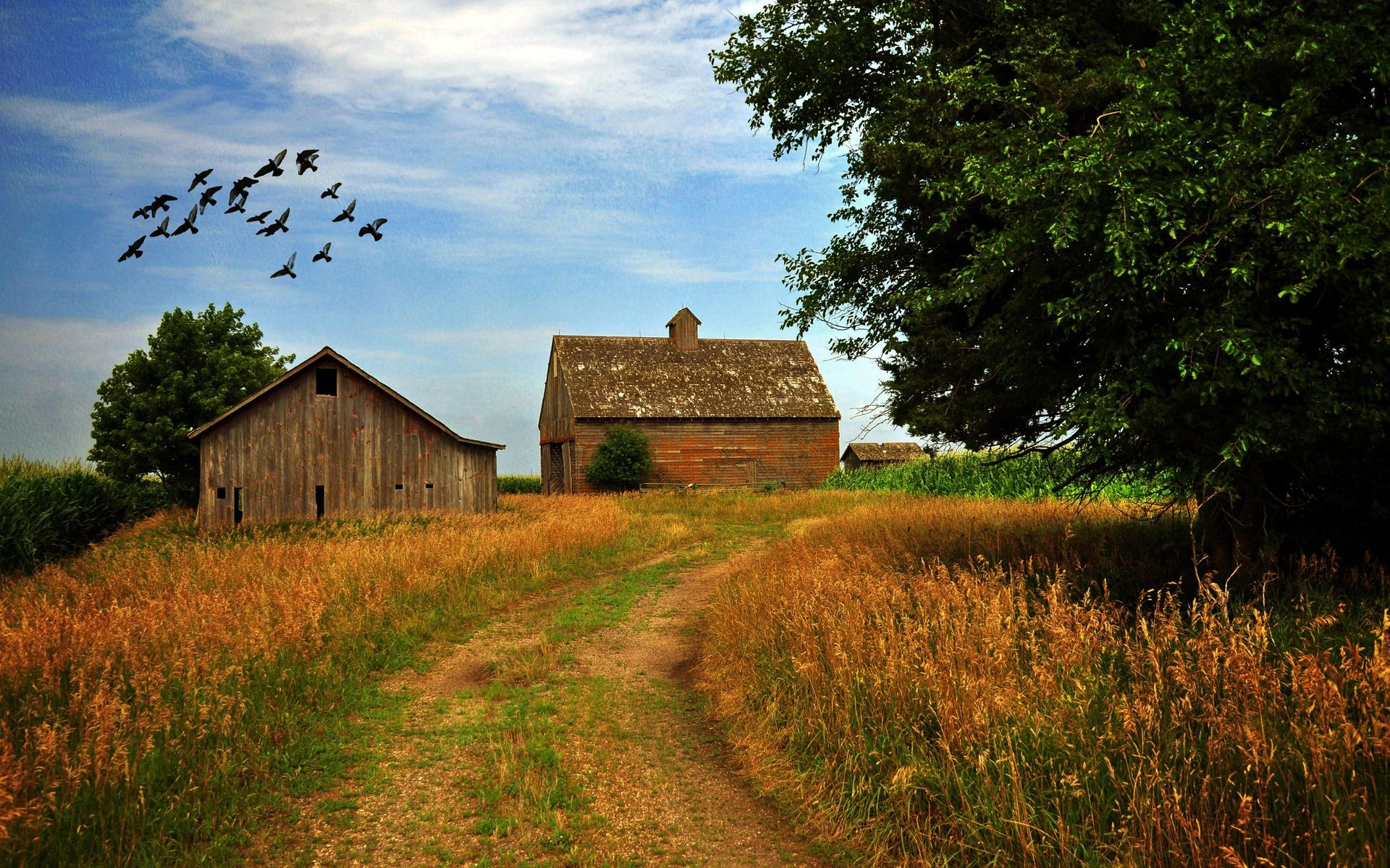 farm homes wallpaper - photo #14