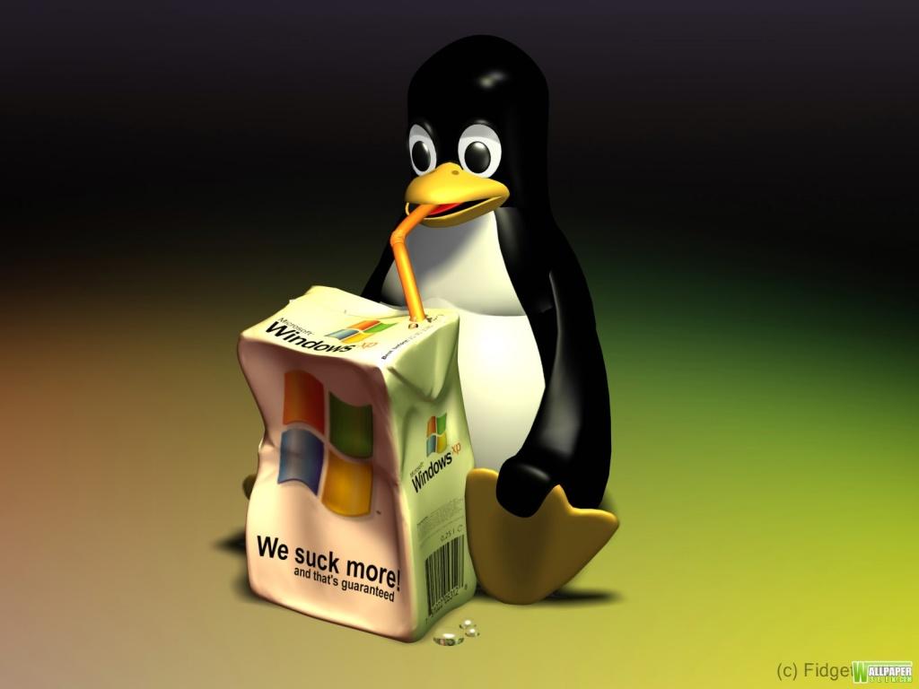 Linux Vs Windows Wallpaper 1024x768