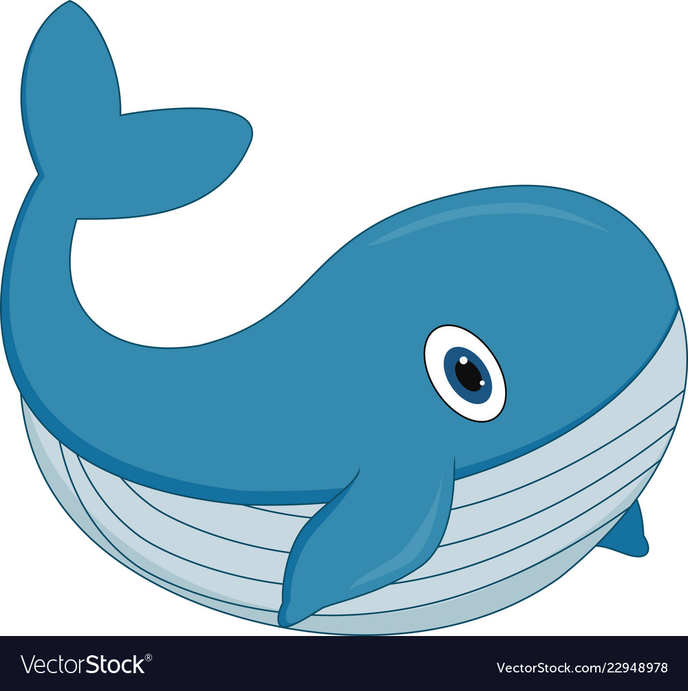 Cute cartoon whale on white background Royalty Vector 1000x1005