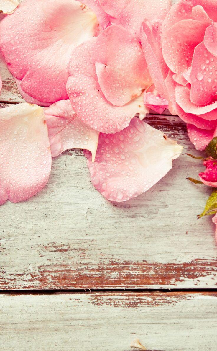 48 Girly Wallpapers Pinterest On Wallpapersafari