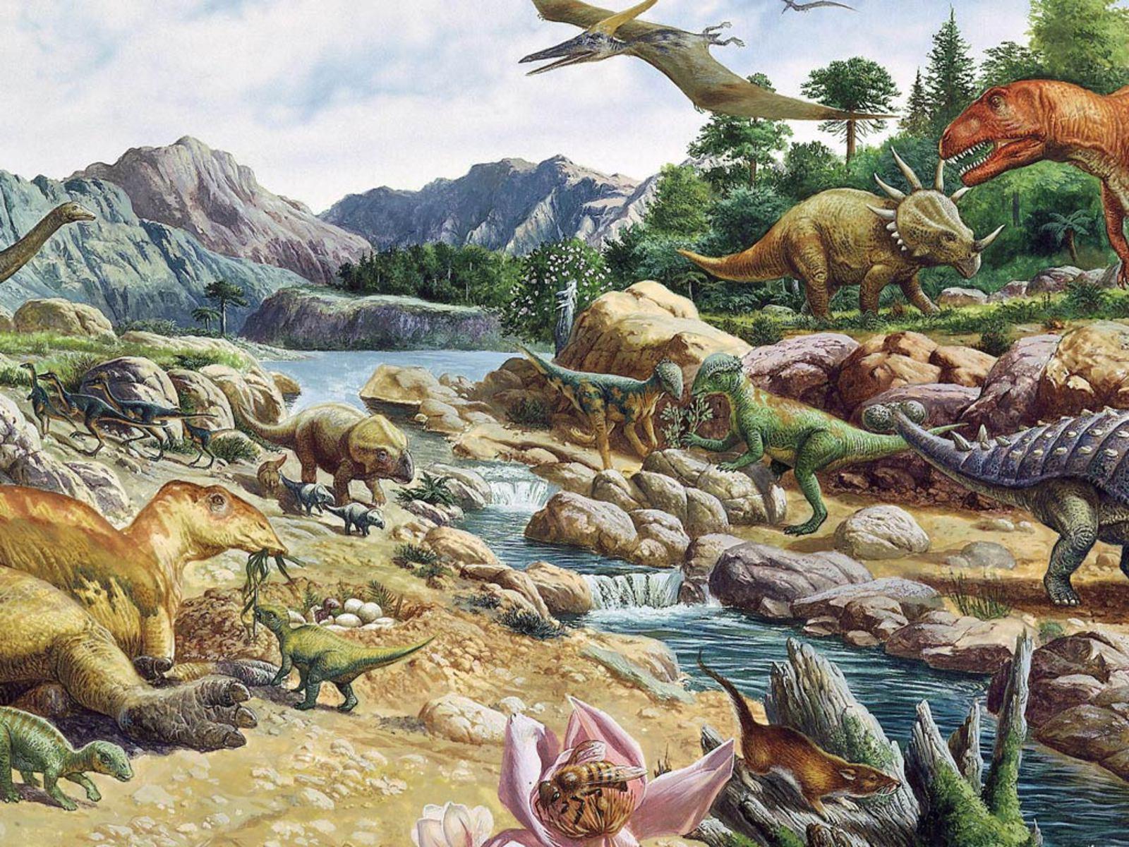 Dinosaur Hd Wallpaper Wallpapersafari