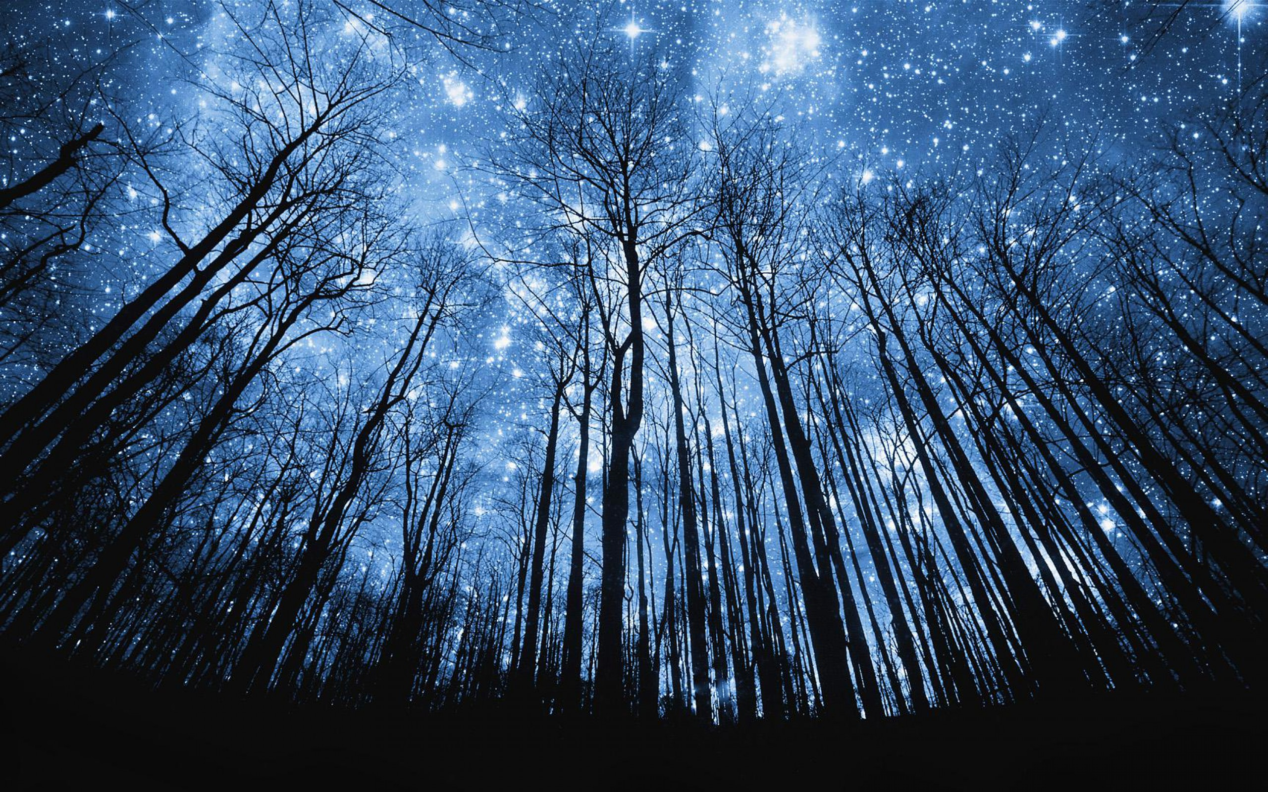 Weekly Wallpaper Enchant Your Desktop With These Starry Night Images 2560x1600