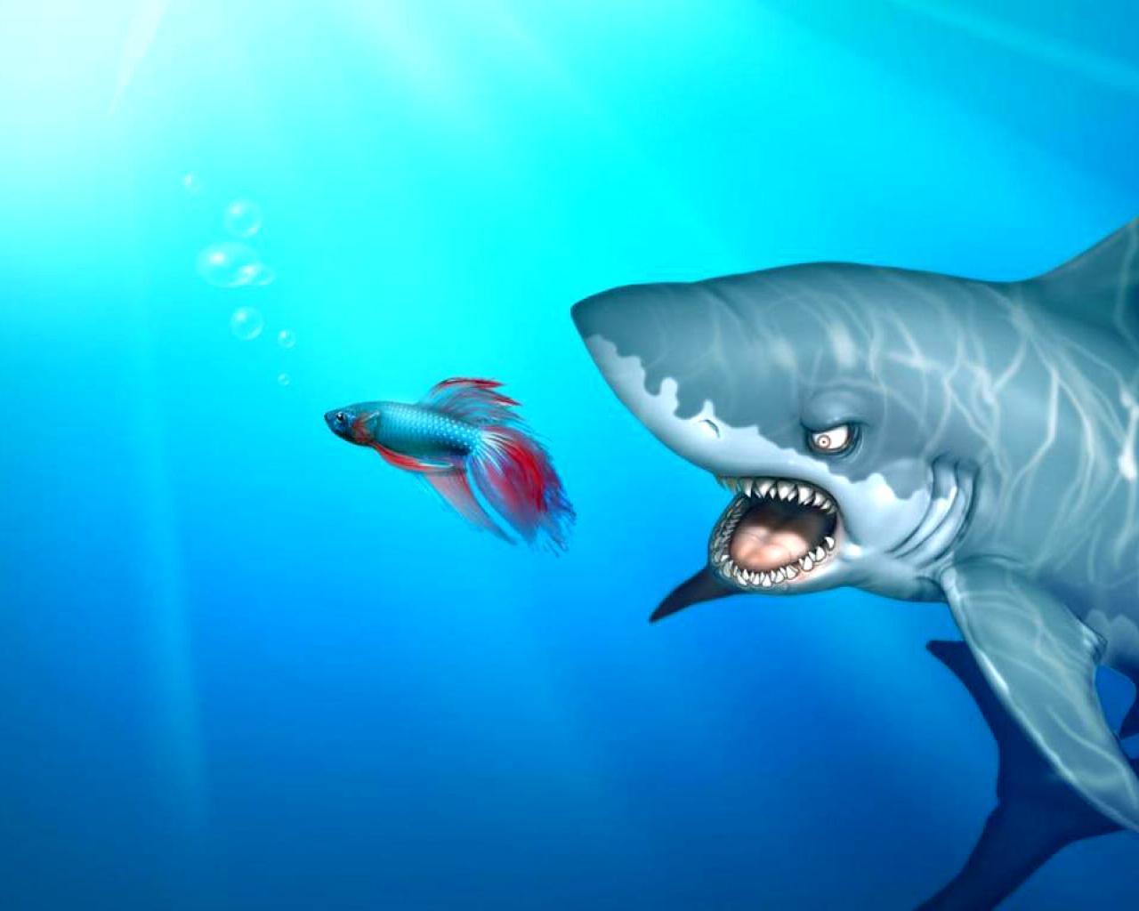 Обои для рабочего стола страшные акулы