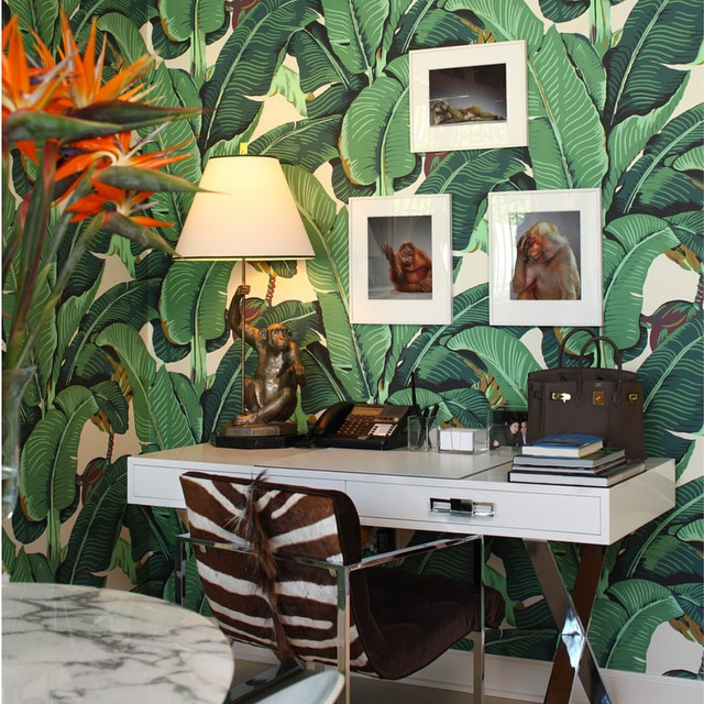 10 Banana Leaf Wallpaper Instagrams to Celebrate the Coming of Spring 640x640