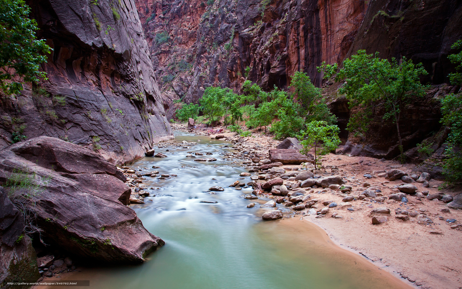 wallpaper Zion National Park Rocks river nature desktop 1600x1000