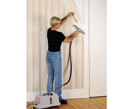 Do it Yourself Tips for Removing Wallpaper Borders 543x446