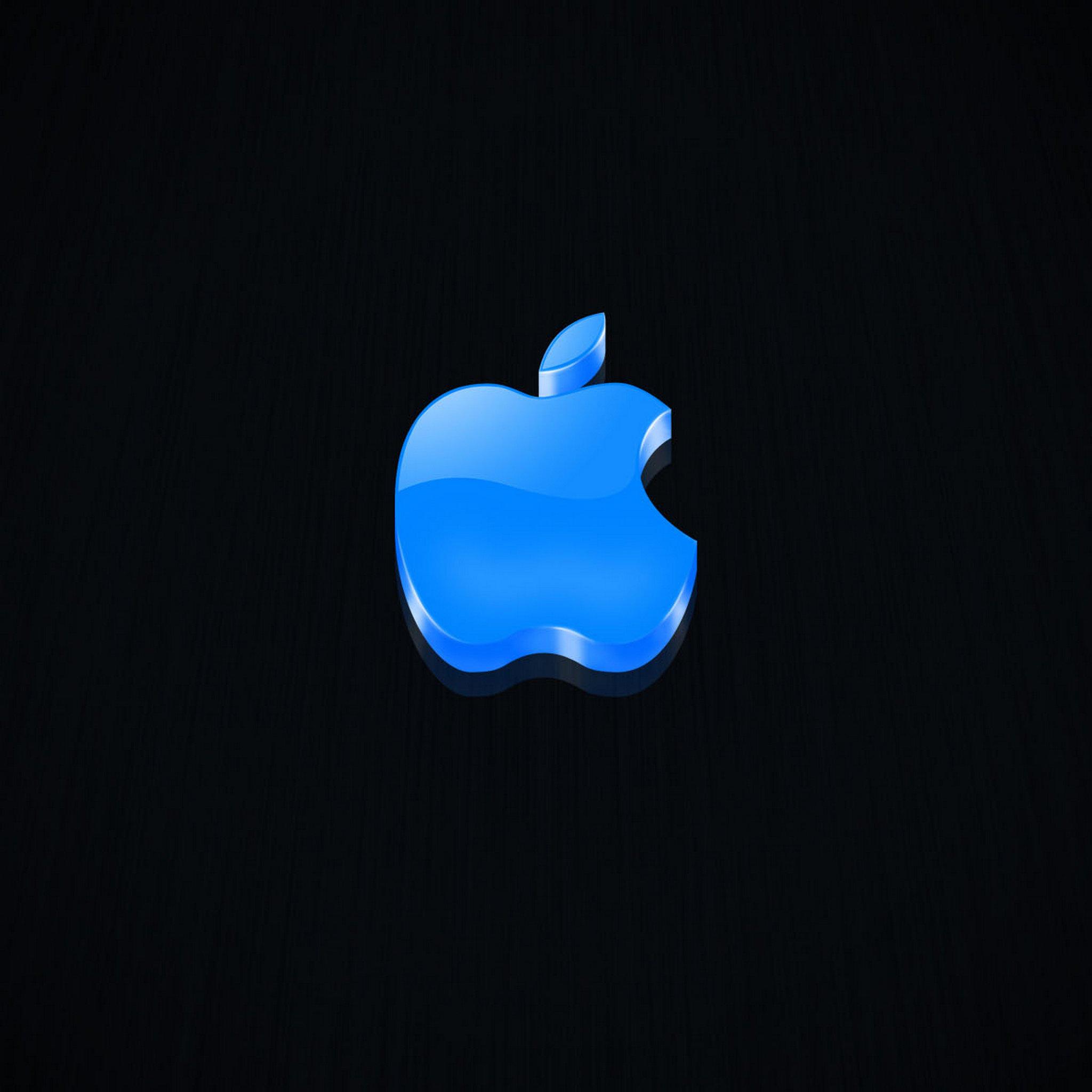 iPad Wallpapers Apple LOGO 025   Apple New iPad iPad 3 iPad 4 2048x2048