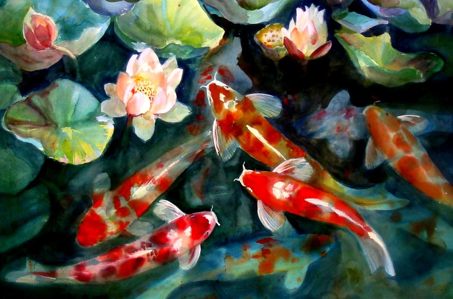 Free Download Water Fish Pond Koi Artwork Lotus Flower Watercolor Art Hd Wallpaper 1504x991 For Your Desktop Mobile Tablet Explore 71 Koi Fish Wallpaper Koi Pond Wallpaper Aquarium Live