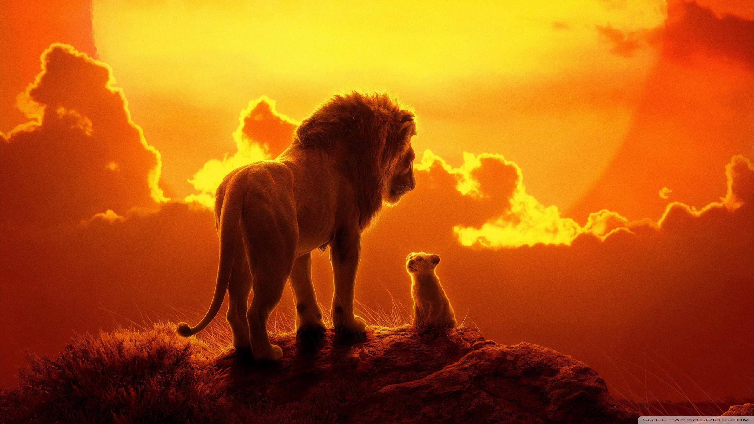 The Lion King 2019 4K HD Desktop Wallpaper for 4K Ultra HD TV 2560x1440