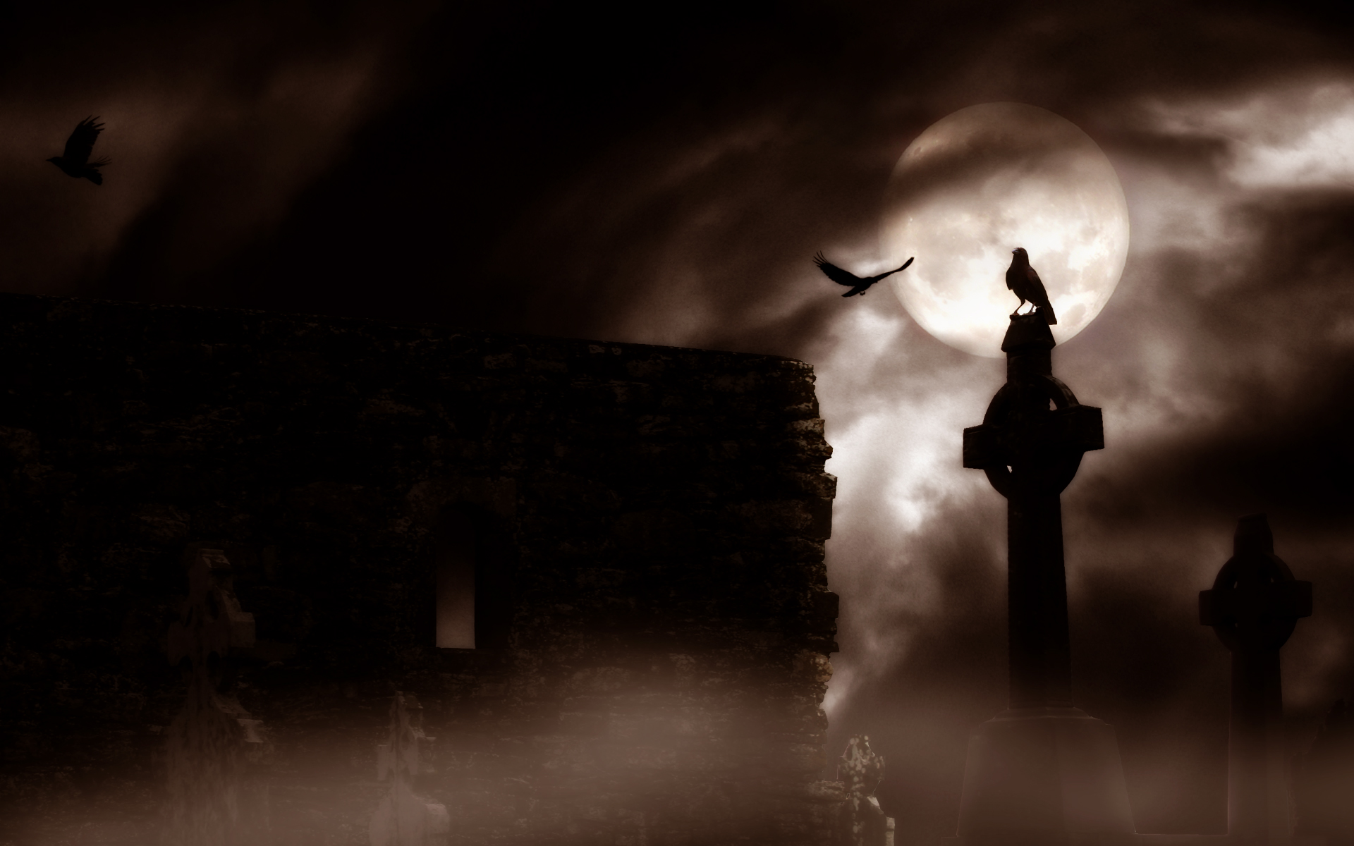 horror gothic raven cemetery graveyard halloween wallpaper background 1920x1200