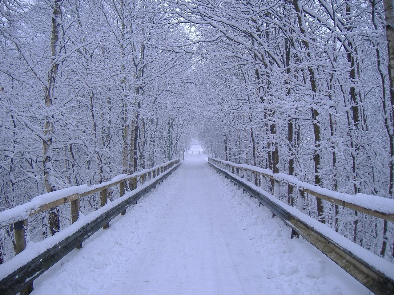winter Scene wallpapers winder snowscape wallpaper snowy 1280x960