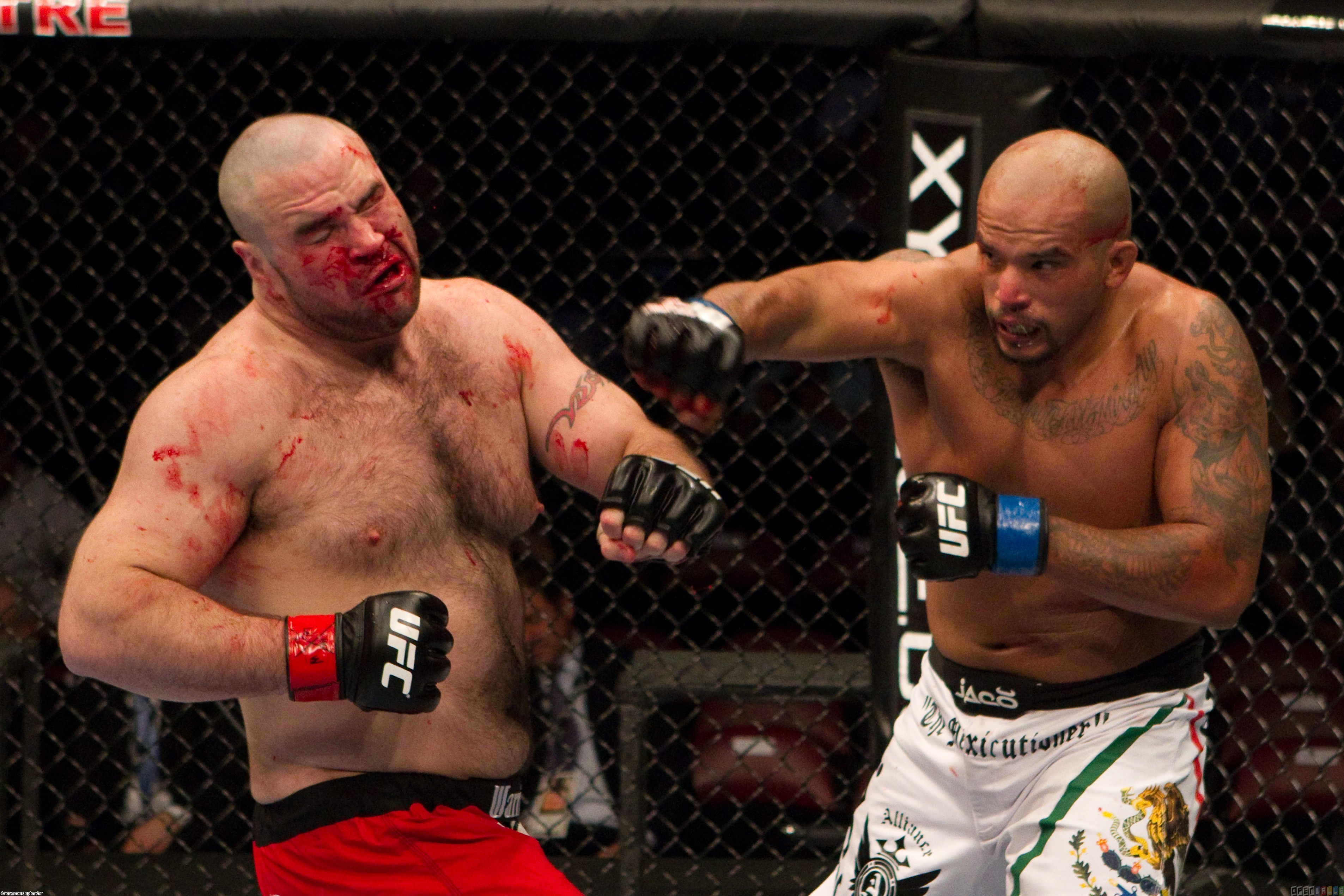 UFC Wallpapers HD   Taringa 3811x2541