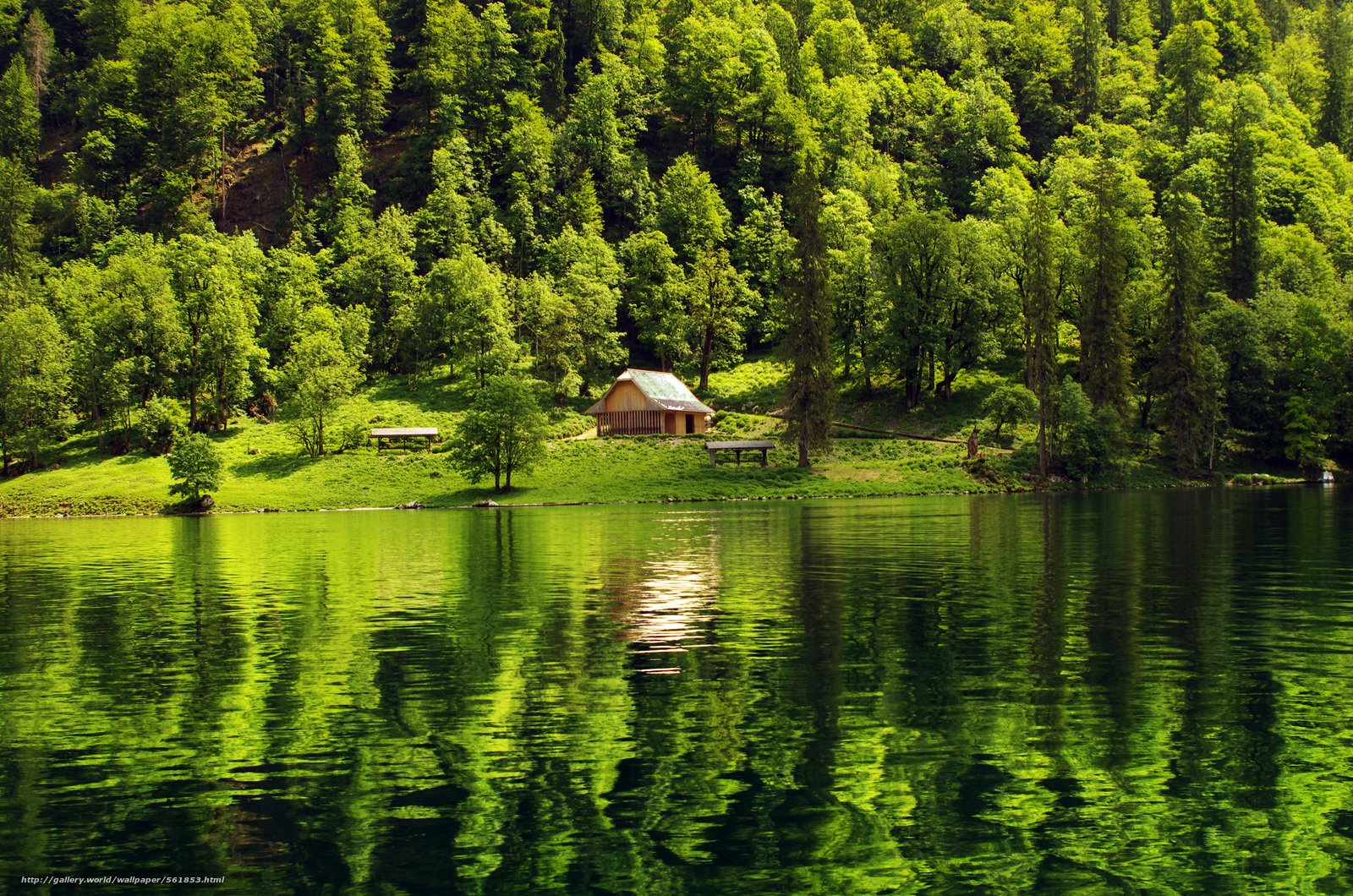wallpaper forest lake cabin landscape desktop wallpaper 1600x1060