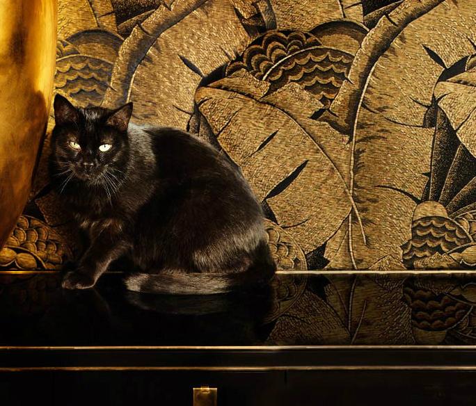 Ralph Lauren Wallpaper Glamorous Luxury Passion 684x584