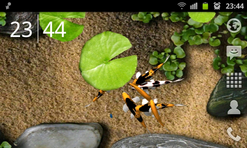 koi 3d live wallpaper for android 800x480