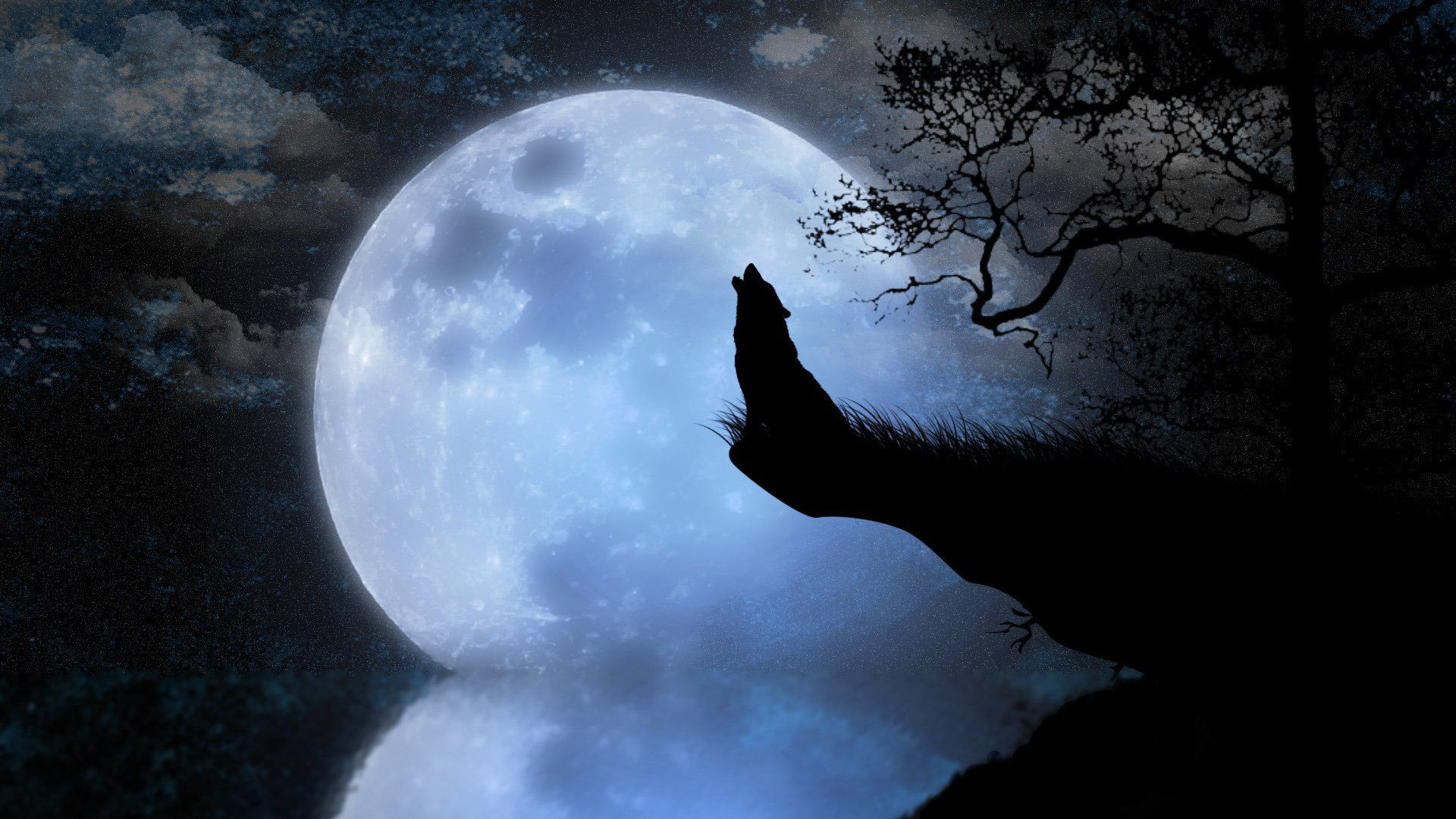 71 Wolves Howling Wallpapers on WallpaperPlay 1920x1080