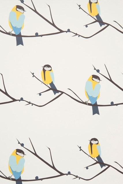 Juneberry Bird   Kids Wallpapers   Kids Bedroom Ideas   Childrens 426x639