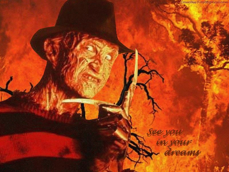 See you in your dreams   Freddy Krueger Wallpaper 16217392 800x600