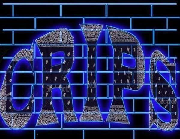 Back Gallery For Crip Gang Wallpapers 600x462