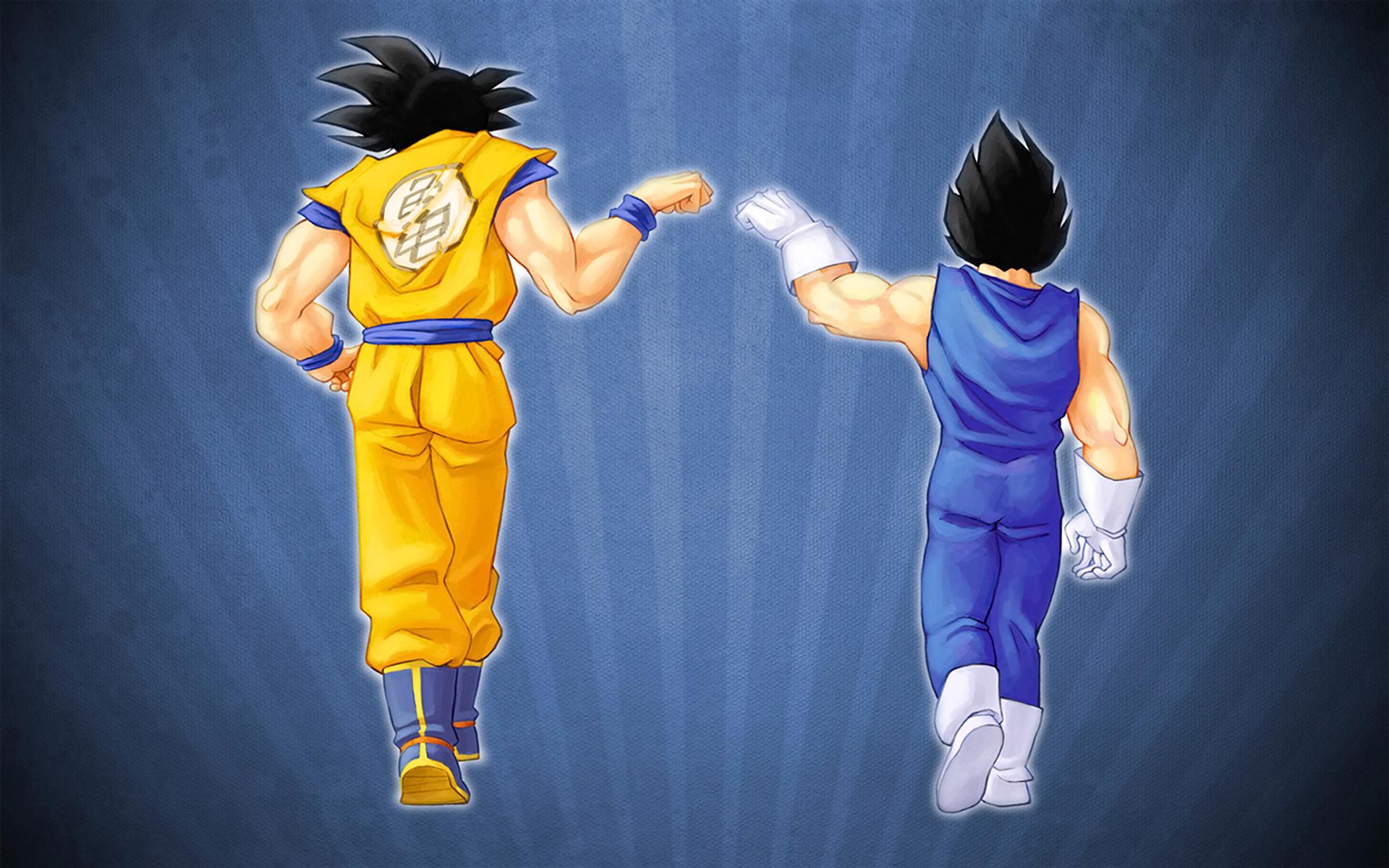 Goku and Vegeta   Dragon Ball Z Widescreen Wallpaper   17590 1920x1200