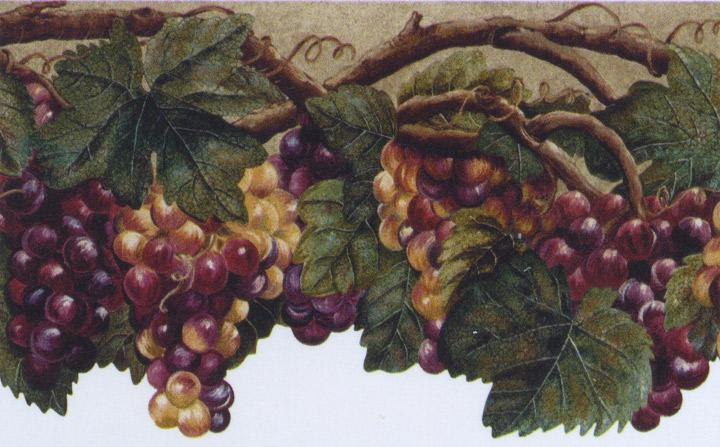 Details about Wallpaper Border Tuscan Grape Leaves Purple Grapes 720x447