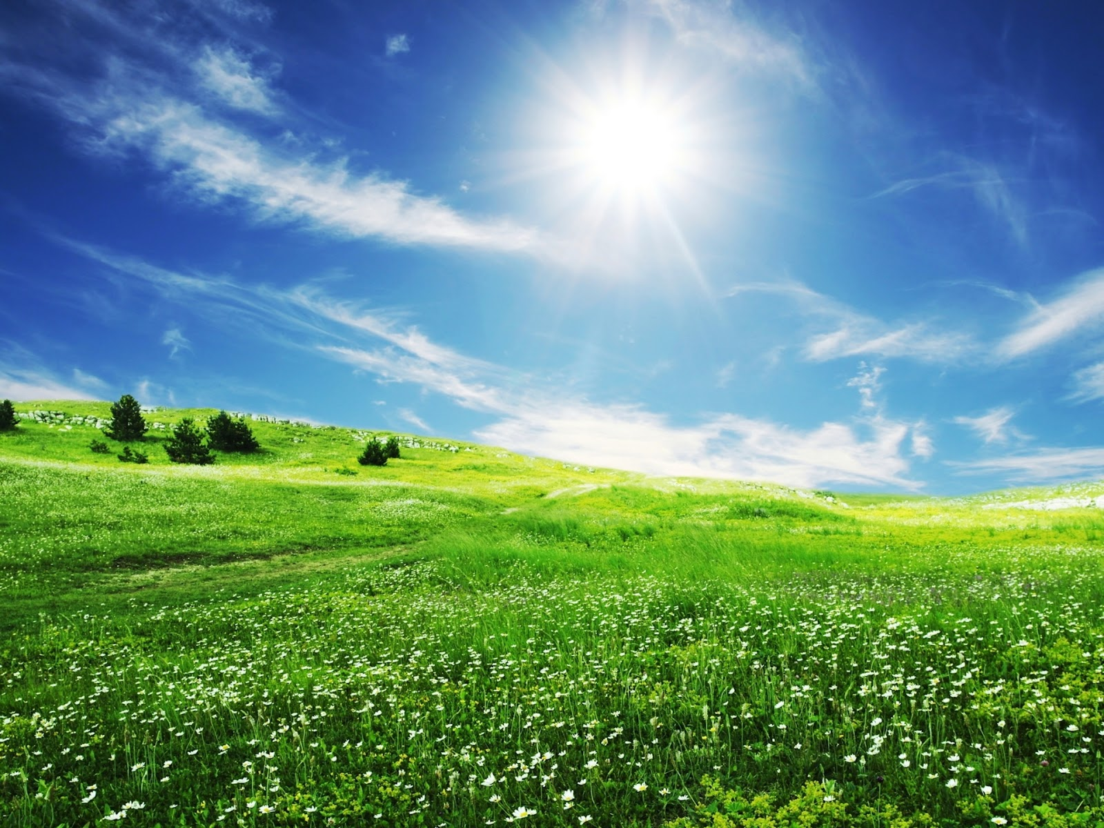 Pictures: 40 Beautiful Nature Wallpapers HD | Amazing ...