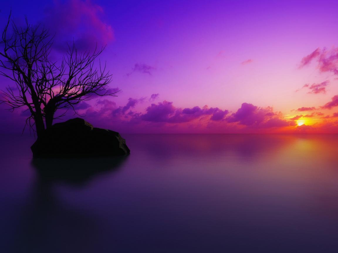 Pink and Purple Fog Sunset Cool Wallpapers 1152x864