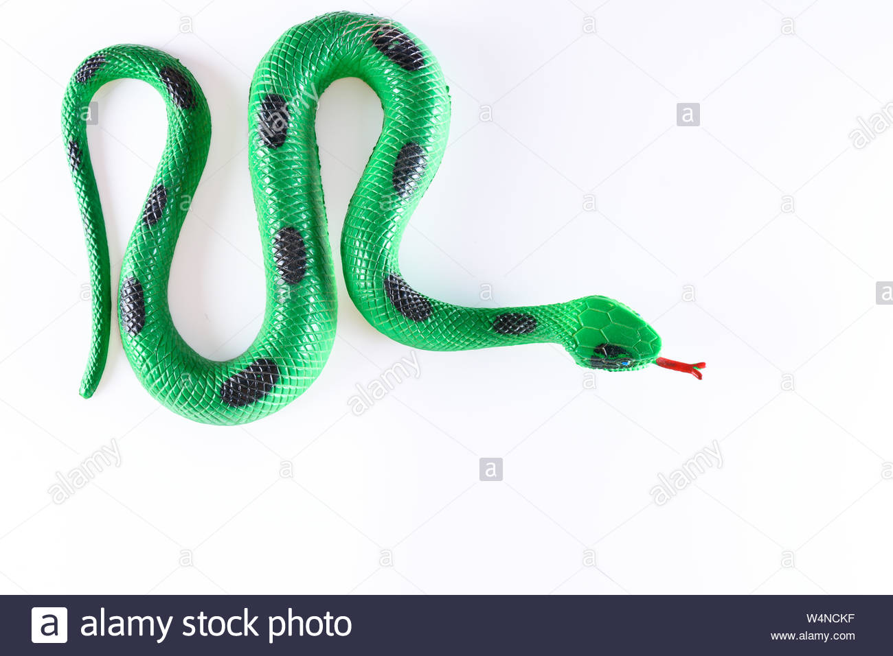 Plastic toy False snake in white background in zenith view Stock 1300x956
