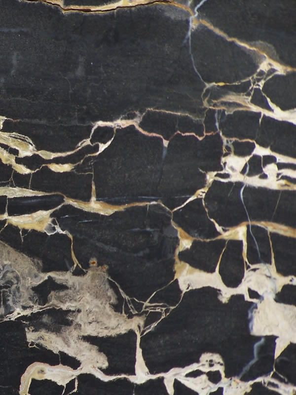 Austral Gold Black Marble from Australia Natural Stone 600x800