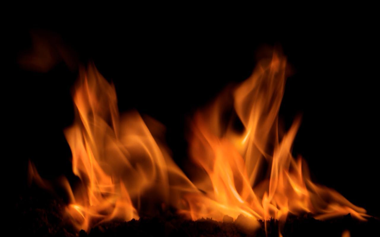 Fireplace Video Live Wallpaper   screenshot 1280x800