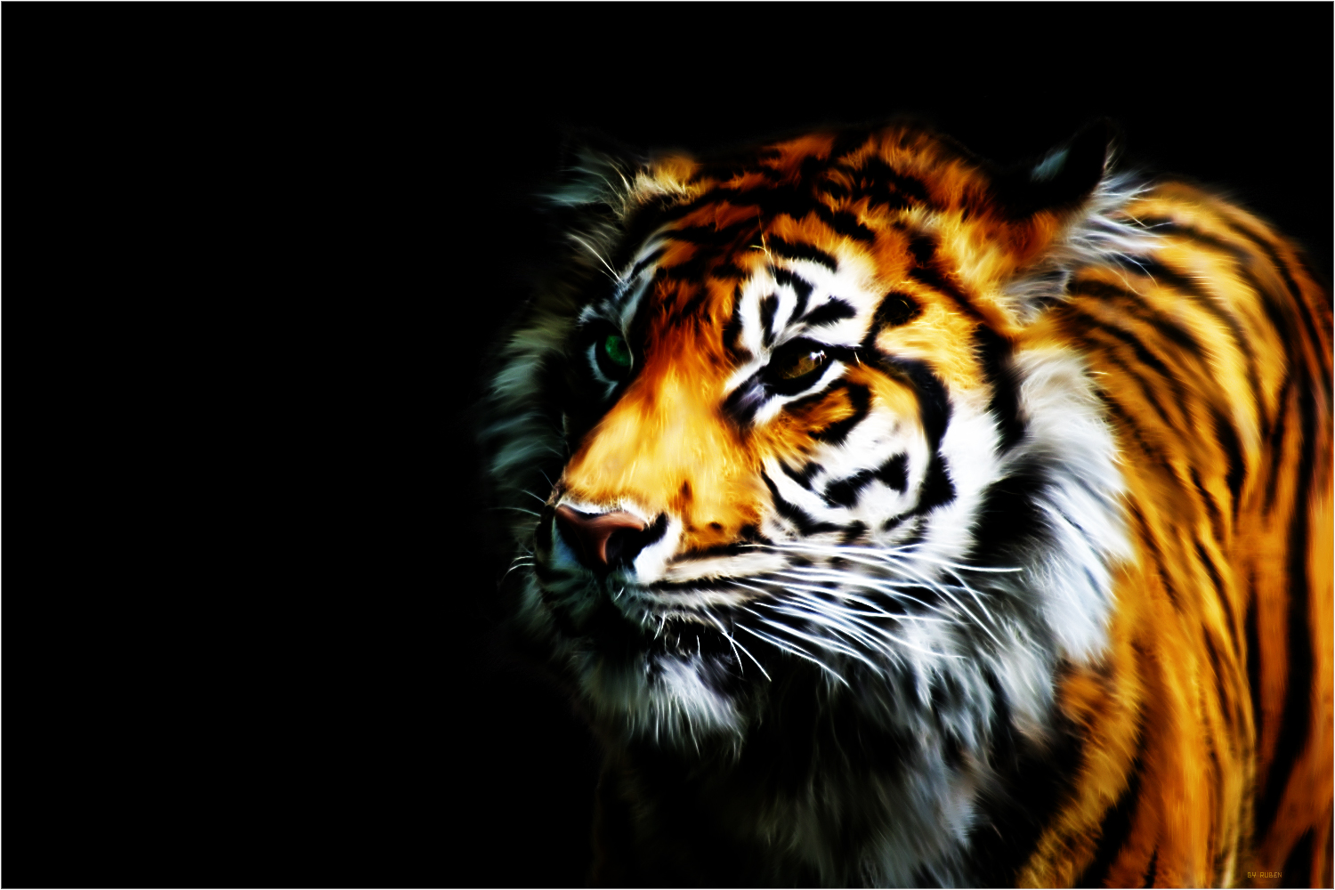 COOL 3D DESKTOP WALLPAPER TIGER 1500x1000