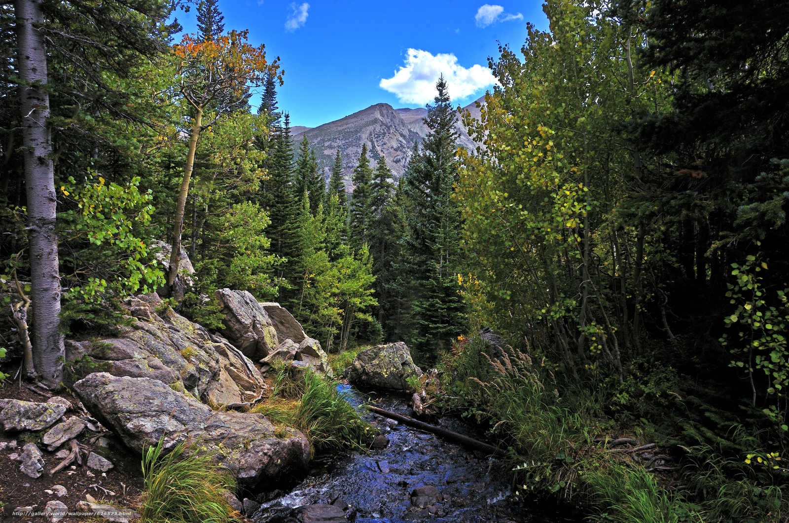Download wallpaper Rocky Mountain National Park river Mountains 1600x1060
