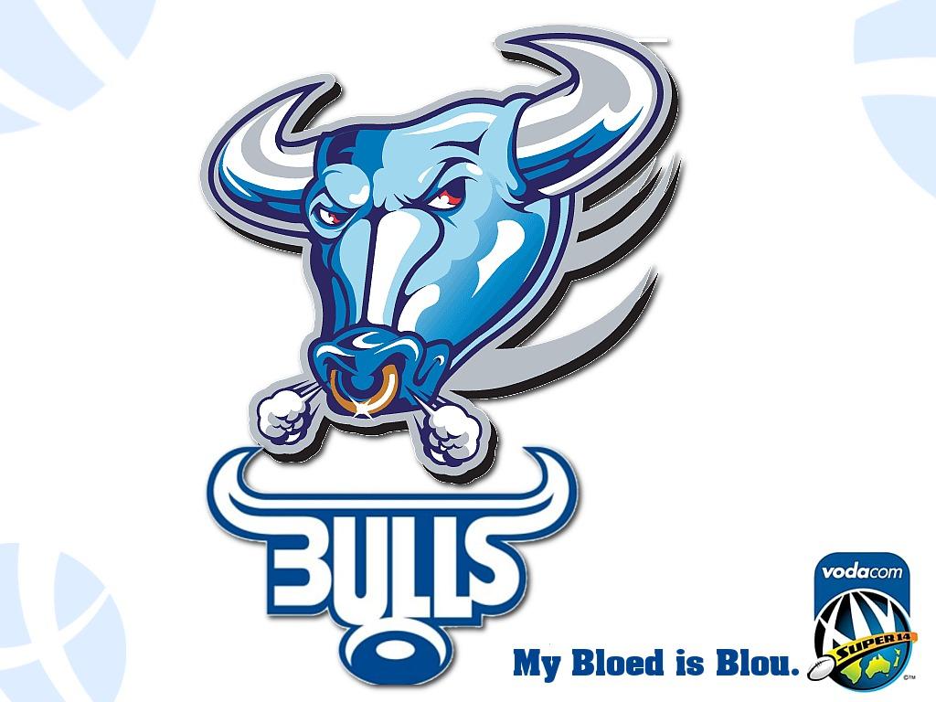 Blue Bulls Wallpapers Download Bulls My bloed is blou 1024x768