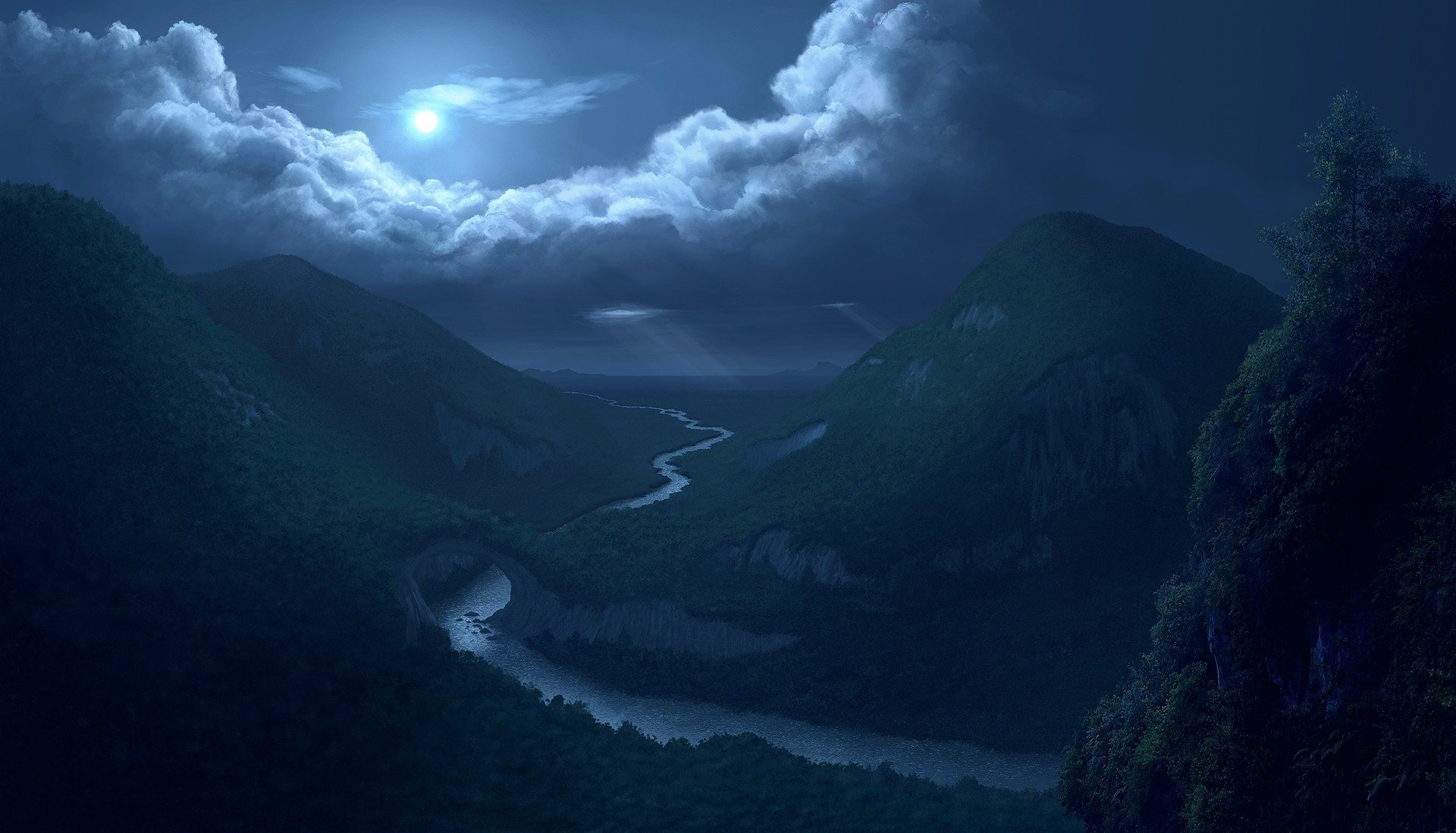forest woods night sky moon clouds reflection wallpaper background 1920x1098