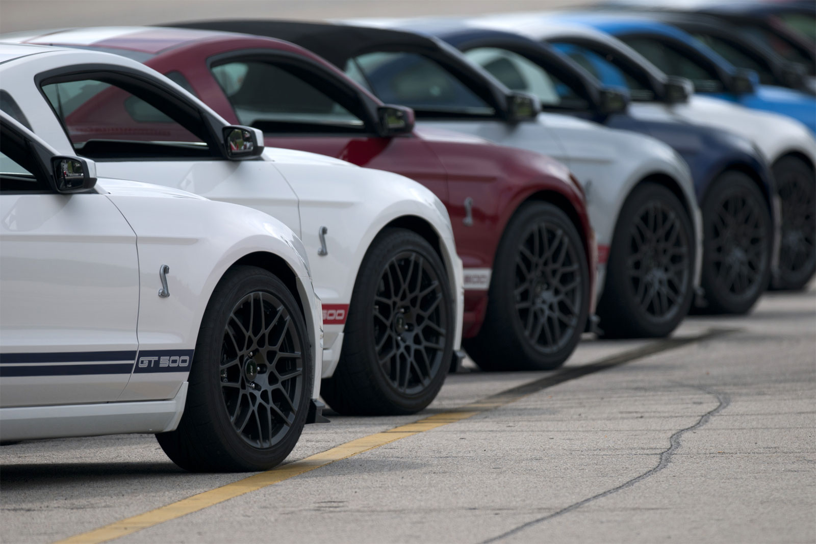 Sport Cars Ford Shelby GT500 Hd Wallpapers 2013 1600x1067