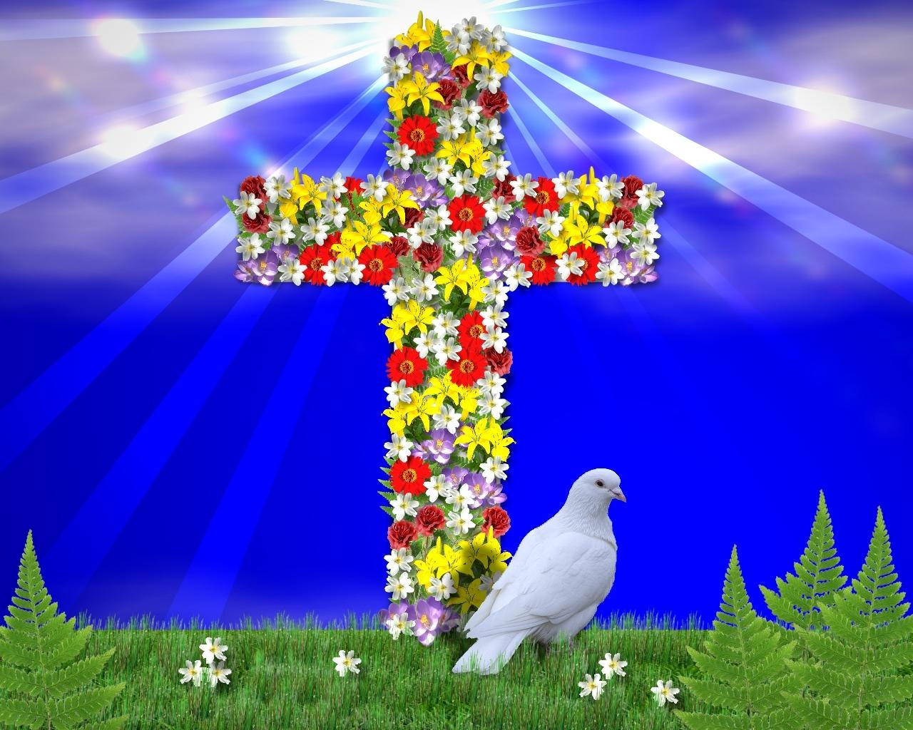 Jesus Wallpaper With Flower Wallpapersafari