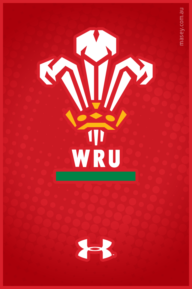 Download Welsh Flag Wallpaper Iphone 6131862386 290b2bc85e opng 640x960