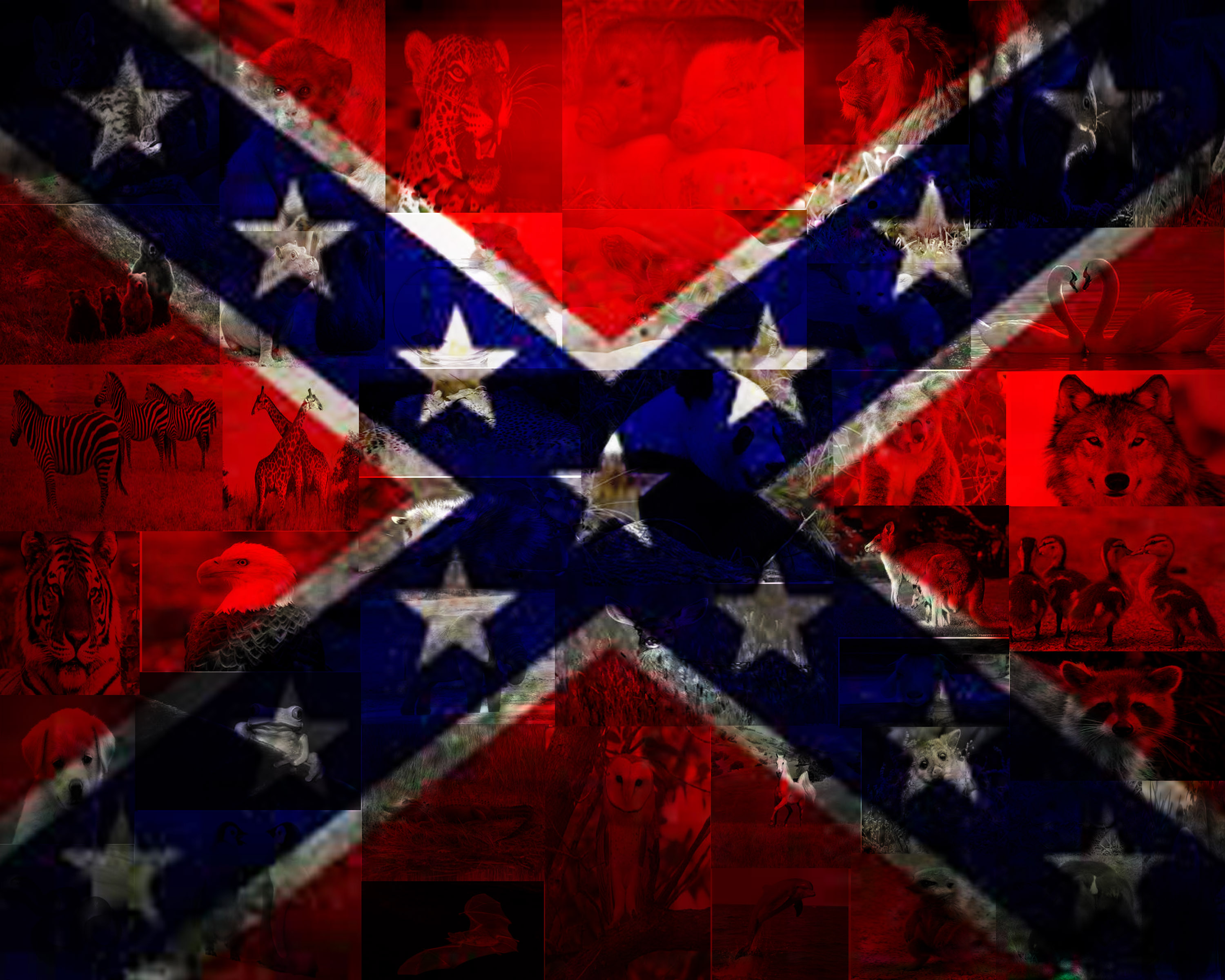 Browning Sign Rebel Flag Rebel Flags Wallpaper ...