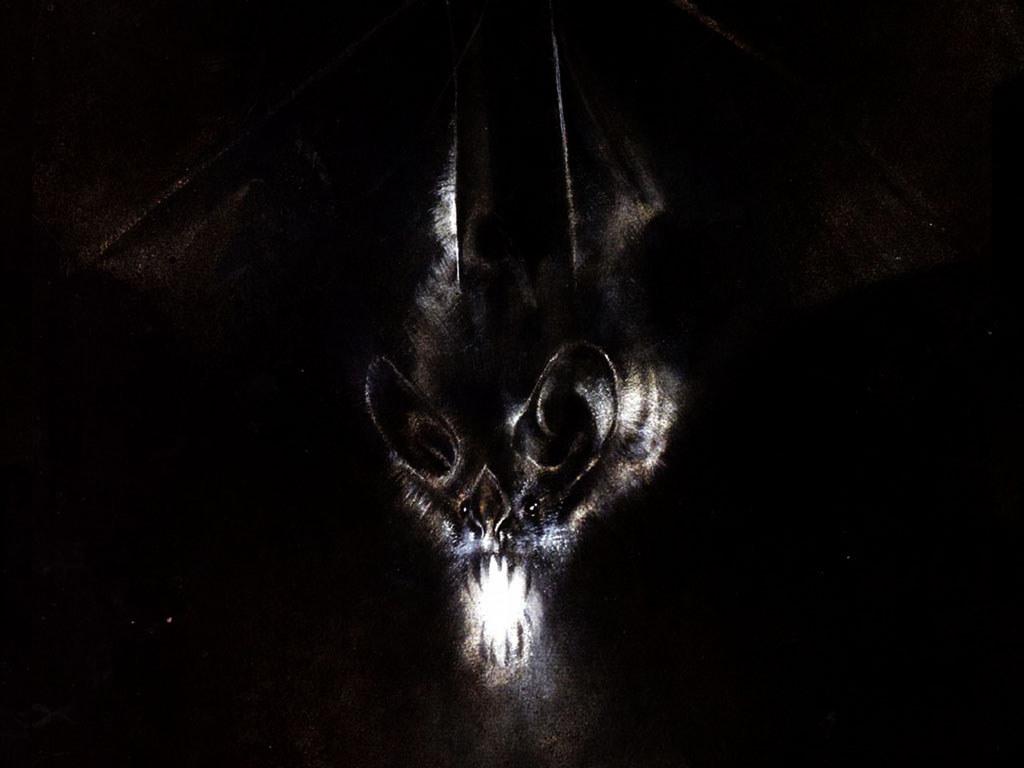 Batman Arkham Asylum Wallpapers 5331 Hd Wallpapers in Games   Imagesci 1024x768