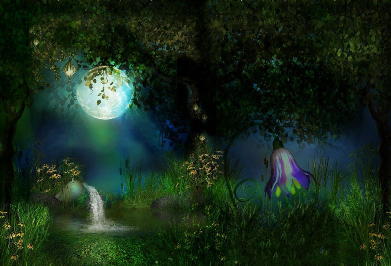 Free Download Enchanted Forest 1280x871 For Your Desktop Mobile