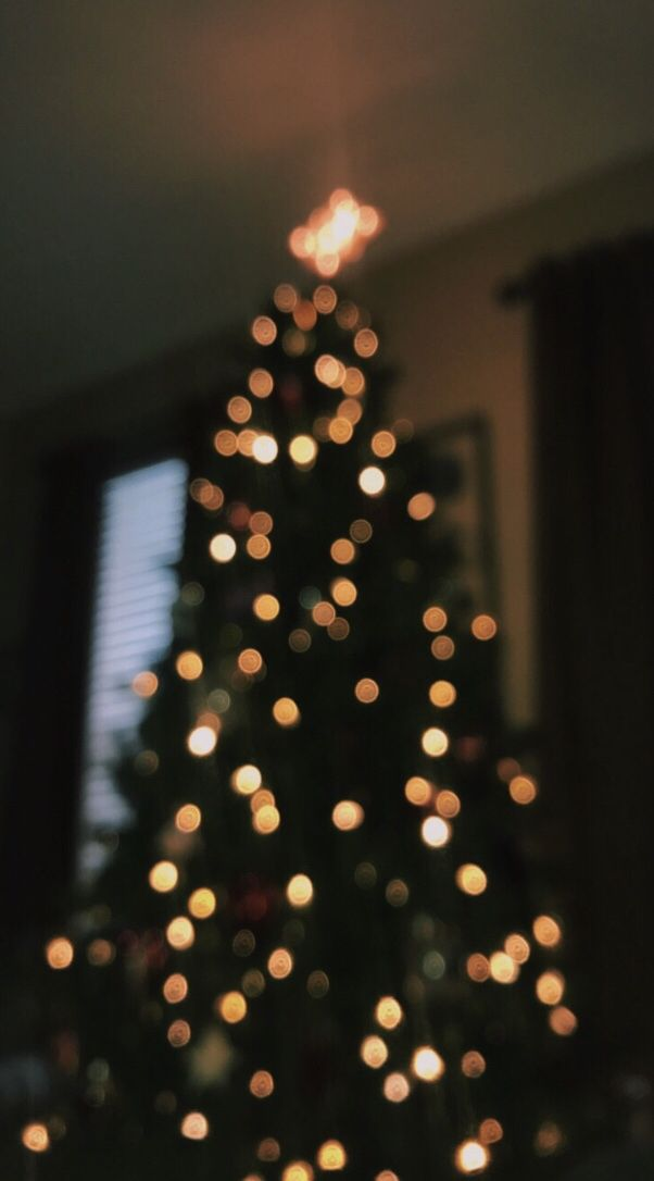 37 Vsco Christmas Wallpapers On Wallpapersafari