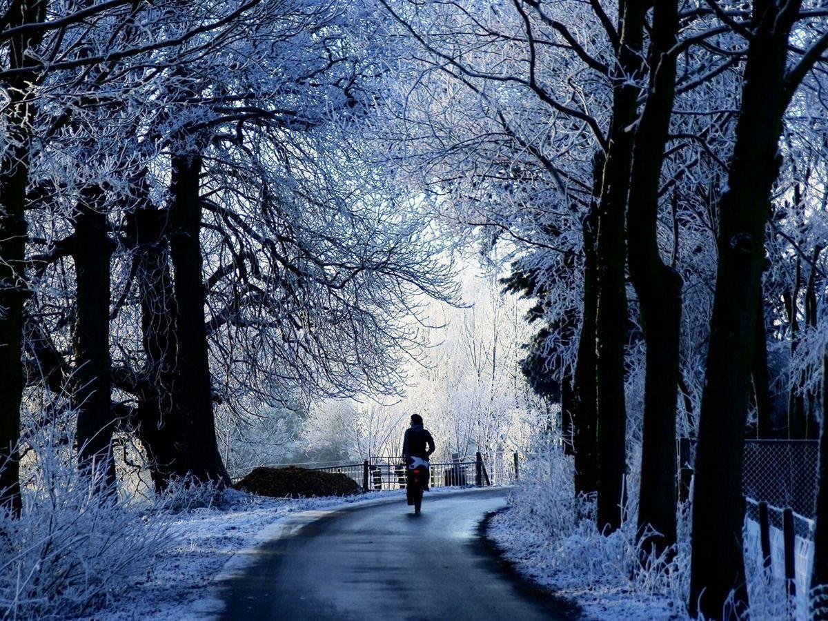 winter theme background wallpapersafari